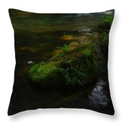 Where The Water Is As Slow As Tranquility Throw Pillow