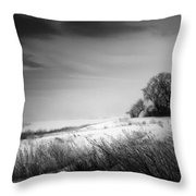 Where The Wild Winds Blow Throw Pillow