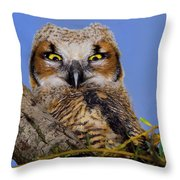 Where'd Ya Get Those Peepers Throw Pillow