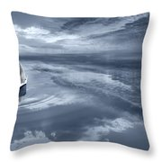 Where's The Fish Throw Pillow