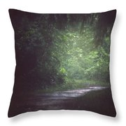 Wherever The Path May Lead Throw Pillow