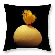 Which Came First? Throw Pillow