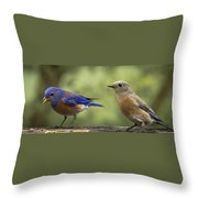 Which One Do You Want Throw Pillow