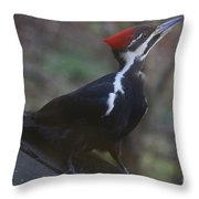 Which Way Is The Suet? Throw Pillow