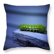Which Way To Go? Throw Pillow
