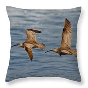 Whimbrels Flying Close Throw Pillow