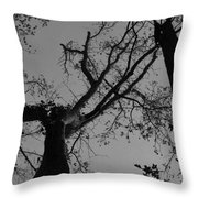 Silhouette Trees Throw Pillow