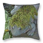 Whimsical Frog Throw Pillow