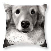 Whimsical Labrador Retriever In A Costume Throw Pillow