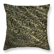 Whimsical Sparkling Sunny Water Play Throw Pillow