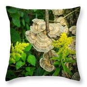 Whirled Turkey Fungus Throw Pillow