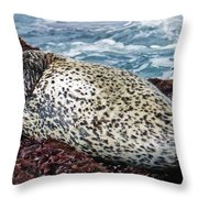 Whiskers And Spots Throw Pillow