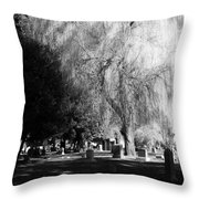 Whispering In The Wind... Throw Pillow by Heather L Wright