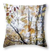 Whispers From The Treshold Throw Pillow