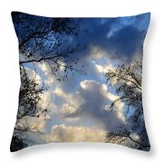 Whispers Of Winter Present Throw Pillow