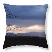 Whispy Farm Weed Throw Pillow