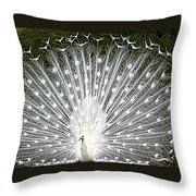 Whit Peacock Throw Pillow