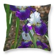 White And Blue Iris Stalks At Boyce Thompson Arboretum Throw Pillow