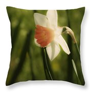 White And Orange Daffodil Throw Pillow