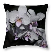 White And Pale Pink Phalaenopsis  165 Throw Pillow