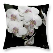 White And Pale Pink Phalaenopsis   9920 Throw Pillow