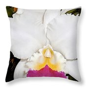 White And Purple Cattleya Orchid Throw Pillow