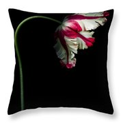White And Red Parrot Tulip Throw Pillow