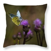 White And Yellow Butterfly On Thistl Throw Pillow