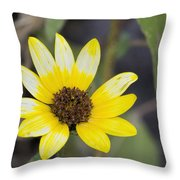 White And Yellow Sunflower Throw Pillow