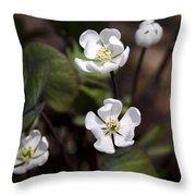 White Anemone Flowers Throw Pillow