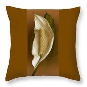 White Anthurium Flower Throw Pillow