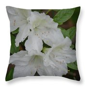 White Azalea 14-1 Throw Pillow