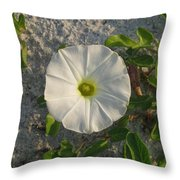 White Beach Flower Throw Pillow