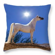 White Beauty Under The Moonlight Throw Pillow