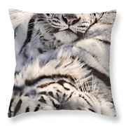 White Bengal Tigers, Forestry Farm Throw Pillow