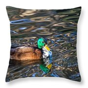 White-bibbed Mallard Throw Pillow