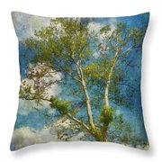 White Birch In May Throw Pillow