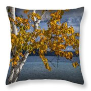 White Birch Tree In Autumn Along The Shore Of Crystal Lake Throw Pillow