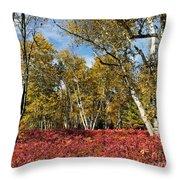 White Birches Of Fall Throw Pillow