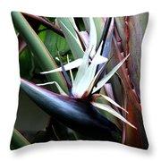 White Bird Of Paradise Throw Pillow