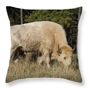 White Bison Symbol Of Hope And Renewal Throw Pillow