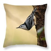 White-breasted Nuthatch Pictures 46 Throw Pillow