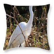White Brilliance Of The Egret Throw Pillow