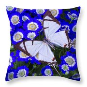 White Butterfly On Blue Cineraria Throw Pillow