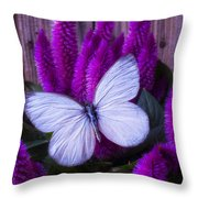 White Butterfly On Flowering Celosia Throw Pillow