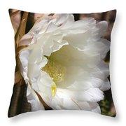 White Cactus Bloom Throw Pillow