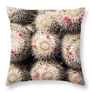 White Cactus Pink Flowers No1 Throw Pillow
