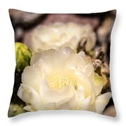 White Cactus Rose Throw Pillow