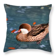 White-cheeked Pintail Throw Pillow