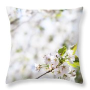 White Cherry Blossom Flowers  Throw Pillow